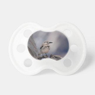 birdy love pacifier