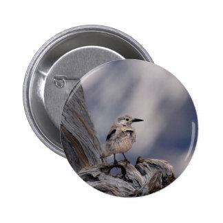 birdy love pinback button