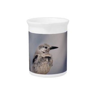 birdy love pitcher