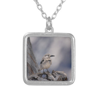 birdy love silver plated necklace