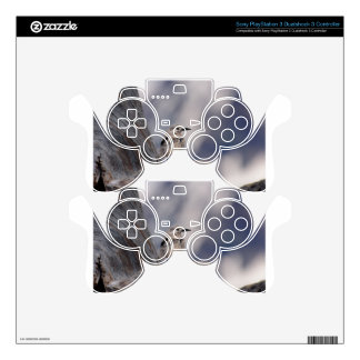 birdy love skin for PS3 controller