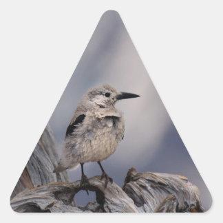 birdy love triangle sticker