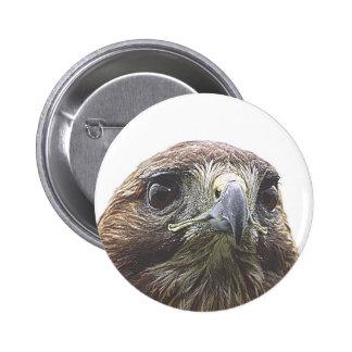birdy pinback button