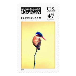Birdy Postage