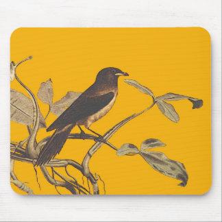 Birdybird Alfombrillas De Raton