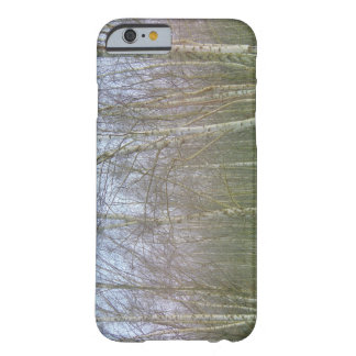 Birke Barely There iPhone 6 Case