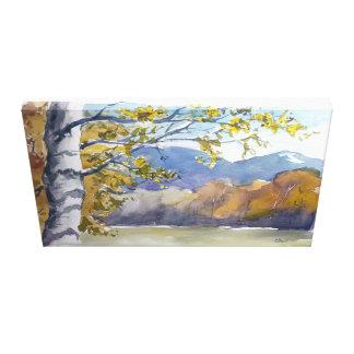 Birke in the autumn canvas print