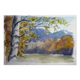 Birke in the autumn poster
