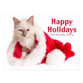 Birman Cat In Santa Hat Postcard