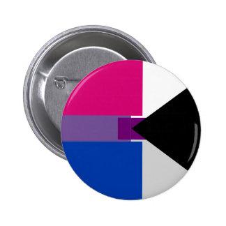 Biromantic Demisexual Pin
