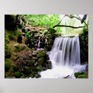 Birr Waterfall Print or Poster