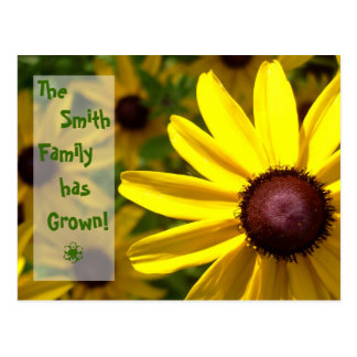 Birth Announcement - Brown-Eyed Susan Postcard