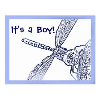 "Birth Announcement - Dragonfly ""It's a Boy!"" Postcard"