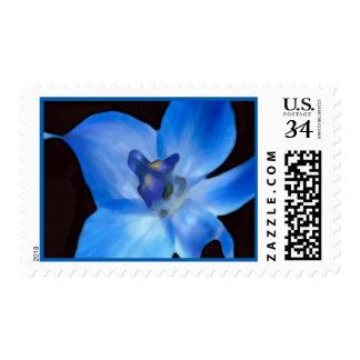 Birth Month Floral Postage July Larkspur