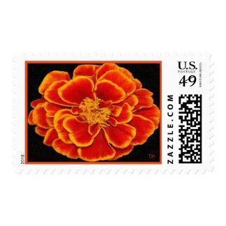 Birth Month Floral Postage October Marigold