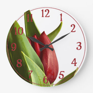 Birth of a Spring Red Tulip Large Clock
