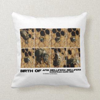 Birth Of European Dark Bee (Honey Bee) Pillow