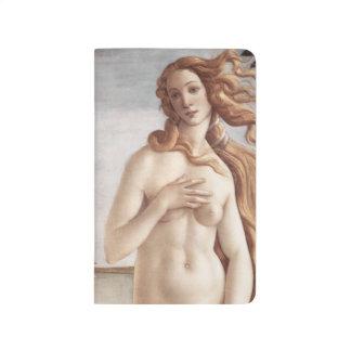 Birth of Venus in detail by Sandro Botticelli Journals