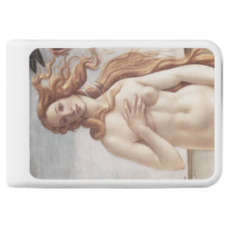 Birth of Venus in detail by Sandro Botticelli Power Bank