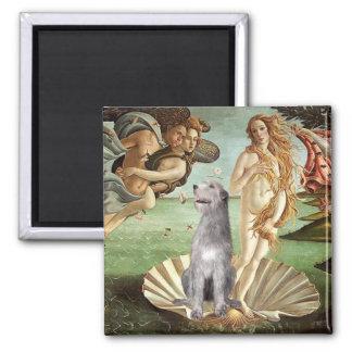 Birth of Venus-Irish Wolfhound #6 Refrigerator Magnets