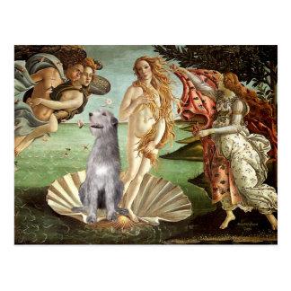 Birth of Venus-Irish Wolfhound #6 Postcards