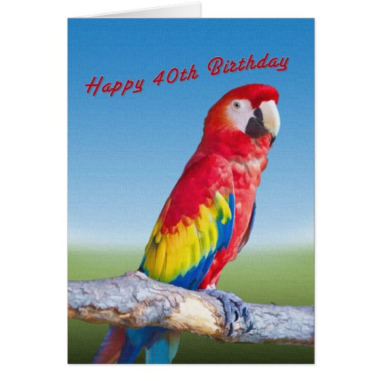 Birthday, 40th, Macaw Parrot Card