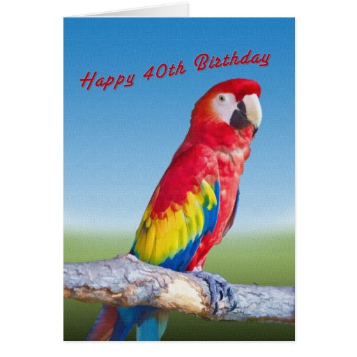 Birthday, 40th, Macaw Parrot Greeting Card