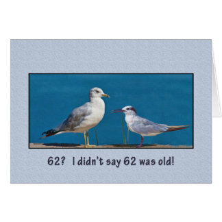 Birthday, 62nd, Gull and Tern and Birds Card