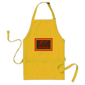 birthday 65th adult apron