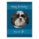 Birthday, 6th, Shih Tzu Dog Card
