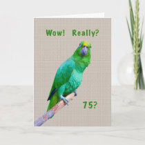 Birthday, 75th, Green Macaw Parrot on a Limb Card