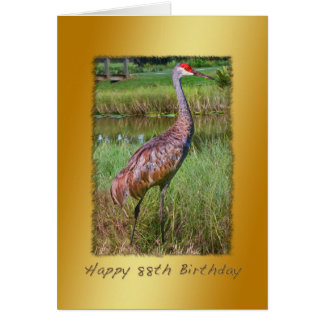 Birthday, 88th, Sandhill Crane Bird Card