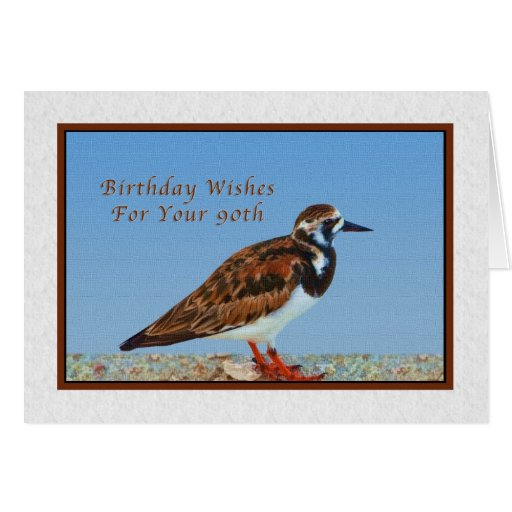 Birthday, 90th, Ruddy Turnstone Bird Greeting Card