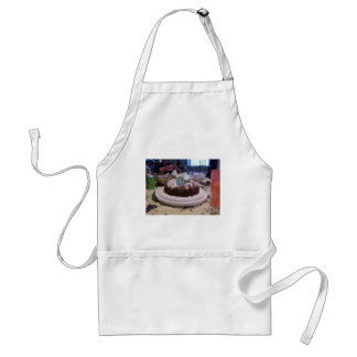 birthday adult apron