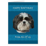 Birthday,  All of Us , Shih Tzu Dog Card