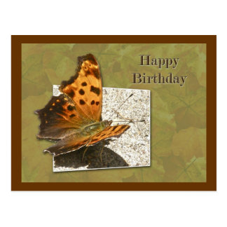 Birthday Angle Wing Comma Butterfly Postcard