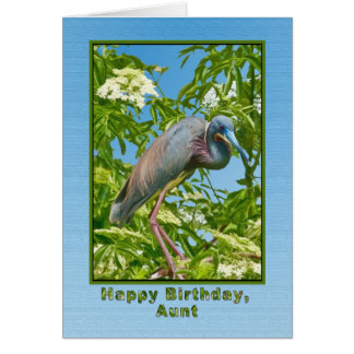 Birthday,  Aunt, Tricolored Heron in a Tree Card