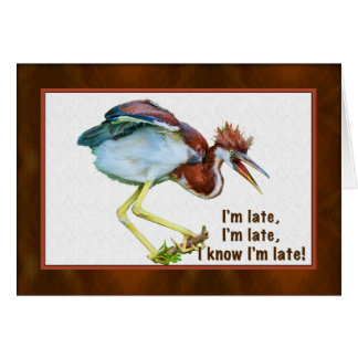 Birthday, Belated, Tricolored Heron, Humorous Card