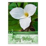 Birthday Blossom Greeting Cards