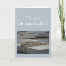 Birthday BROTHER Fun Age Humor Polar Bear Animal Card