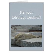 Birthday BROTHER Fun Age Humor Polar Bear Animal Card