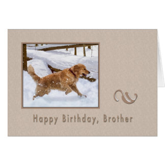 Birthday, Brother, Golden Retriever Dog in Snow Card