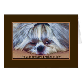 Birthday, Brother-in-law, Sleepy Shih Tzu Dog Card