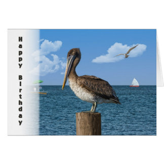 Birthday, Brown Pelican with Seascape Greeting Card