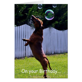 Birthday Bubble Dog Stationery Note Card