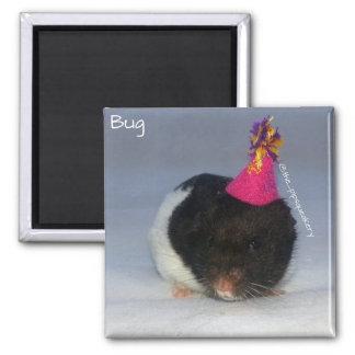 Birthday Bug 2 Inch Square Magnet
