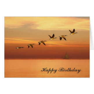 Birthday, Canada Geese in Flight at Sunset Card