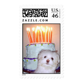 Birthday Candles and Cake Party Postage Stamp