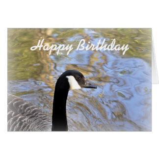 Birthday Card: Canada Goose Card