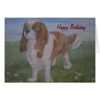 Birthday Card  Cavalier King Charles Spaniel,